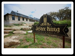jester_king1